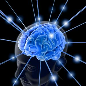 brain-memory
